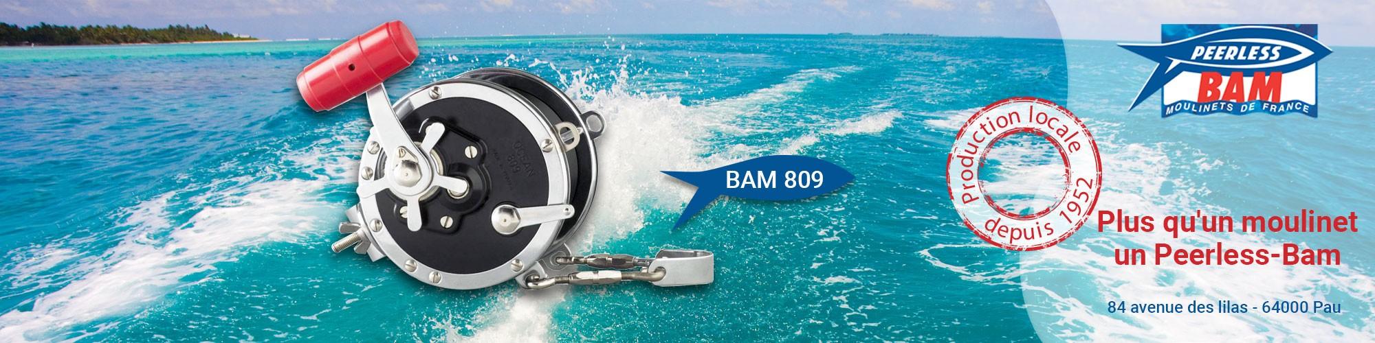 Bam 809